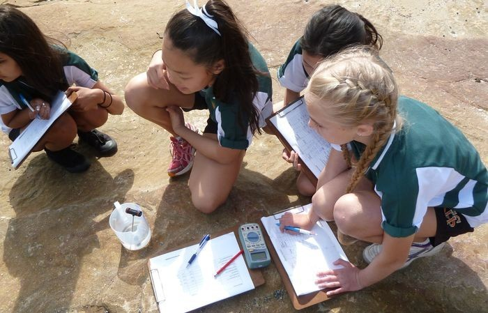students collecting data in the field
