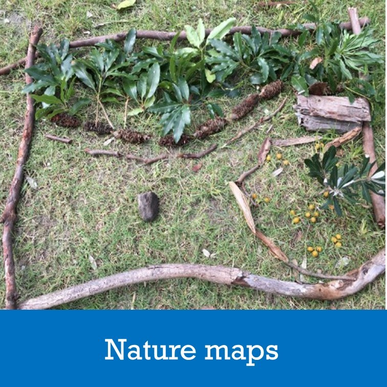 natural objects used to make a map